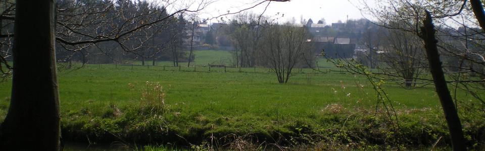 Commune de Ham-sur-Heure-Nalinnes | Fête du printemps des guides-nature des Iles de Vie