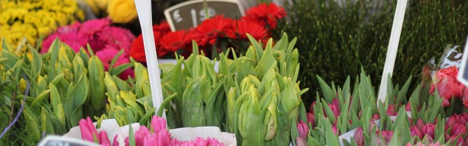 Commune de Ham-sur-Heure-Nalinnes | Marché aux fleurs à l'école communale de Beignée