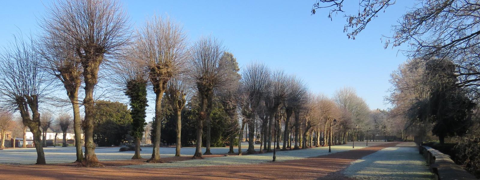 Commune de Ham-sur-Heure-Nalinnes | Parc Chateau Ham-sur-Heure automne 1