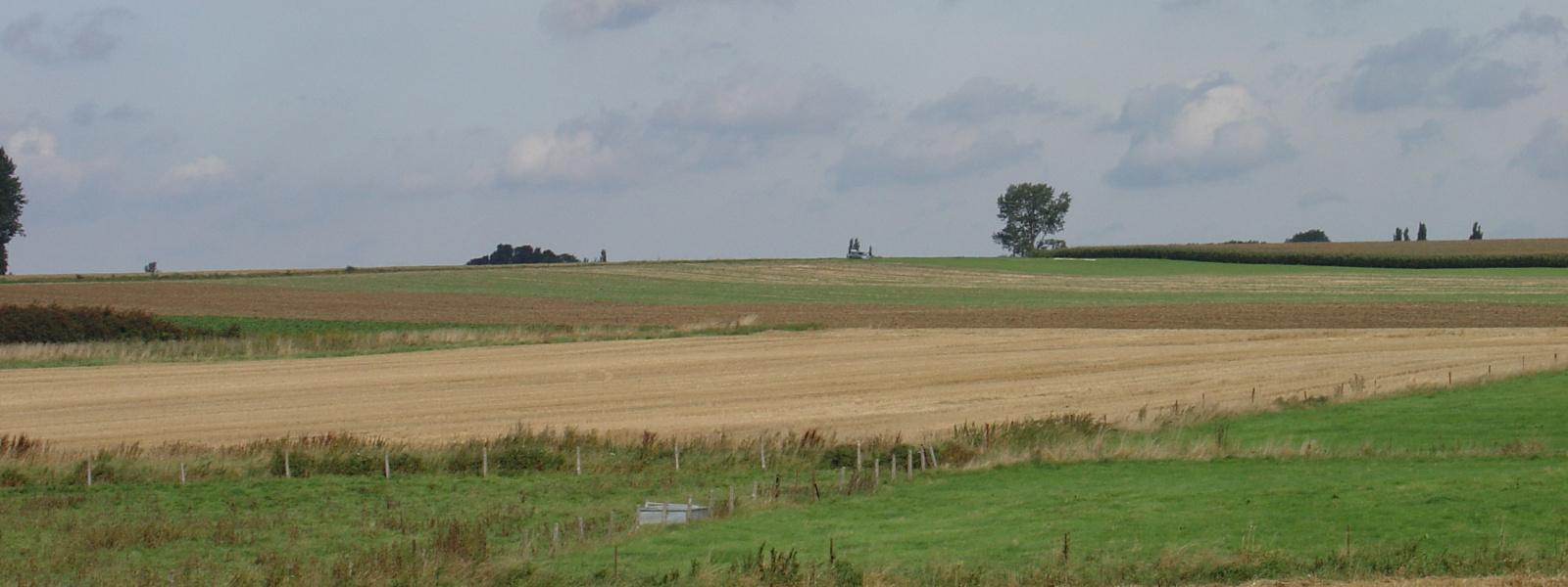 Commune de Ham-sur-Heure-Nalinnes | vue campagne 1